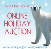 OFS Holiday Auction