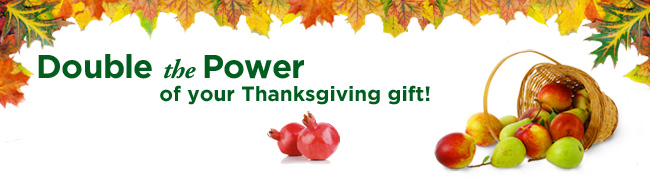 Double the Power of your Thanksgiving gift
