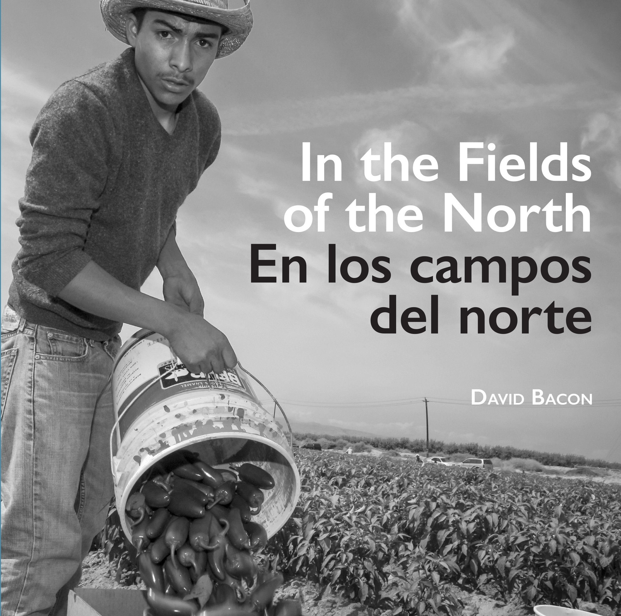 In the Fields of the North By David Bacon